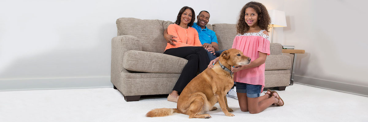 Chem-Dry of Springfield  is your healthy home provider for carpet and upholstery cleaning